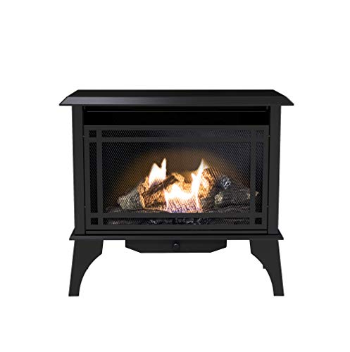 Pleasant Hearth VFS2-PH30DT 30,000 BTU 32-Inch...