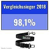 BELISY Hunde-Sicherheits-Gurt fürs Auto – höchste Sicherheit für Dich und Deinen Hund – mit besonders elastischer Ruckdämpfung für maximalen Komfort – passend für alle Hunderassen – höchste Markenqualität - 2