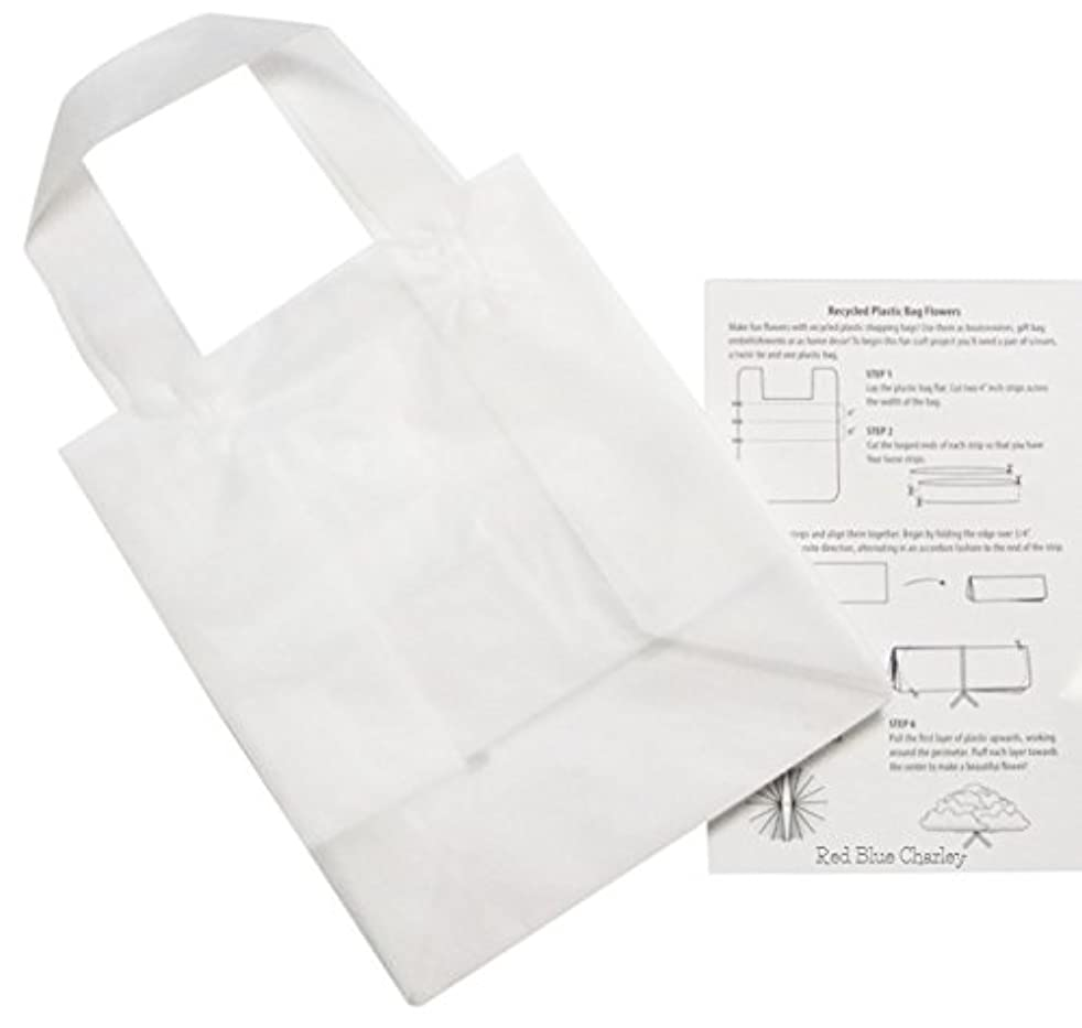 Plastic Shopping Bags | 24 Pack | Clear Frosted Gift Bag with Handle for Retail (Cub - 8x4x10)