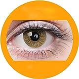 Hellbraun: Farbige Jahres Kontaktlinsen ohne Stärke mit Aufbewahrungsbox braun weich als 2er Pack (2 Stück) angenehm zu tragen, perfekt für helle und dunkle Augen