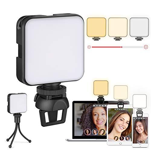 Luce per Videoconferenza, Zoom Ring Light, Luce ad Anello per Webcam & Computer/Laptop Portatile, Luce per Selfie con Stativo Treppiede & Clip per Tik Tok, Telefono, Fotografia, Youtube