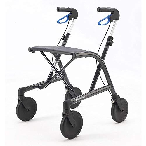 Invacare Dolomite Rollator für Mobilitätshilfe, glänzend, 6,5 kg, Grau