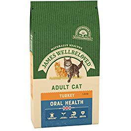James Wellbeloved Turkey and Rice Oralcare Dry Cat Food 1.5g