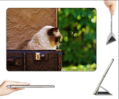 Case for iPad Pro 11 inch 2020 & 2018 - Luggage Antique Cat British Shorthair Funny 6