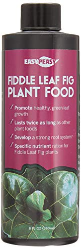 Fiddle Leaf Fig Plant Food 6-2-4   Liquid Houseplant Fig Tree Fertilizer   Bottle Lasts Twice as Long as Other competitors