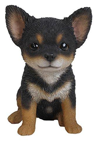 Hi-Line Gift Ltd Chihuahua Puppy Statue, Black/Brown
