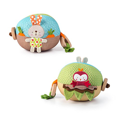 Bright Starts Giggle Garden Boule