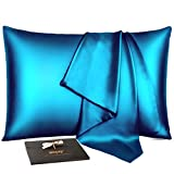 Winjoy Silk Pillowcase for Hair and Skin,25 Momme 100% Natural Mulberry Silk Pillowcases Queen Size with Hidden Zipper,Soft Breathable Both Sides Pure Silk,1Pack,Teal