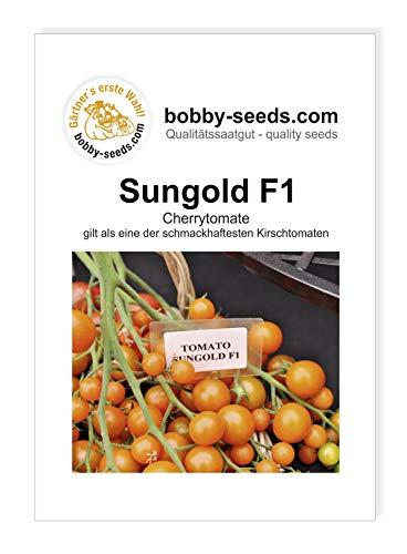 Sungold F1 Cherrytomate Tomatensamen von Bobby-Seeds Portion