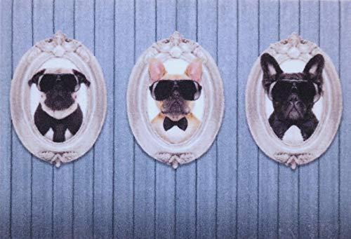 oKu-Tex Felpudo | Felpudo antisuciedad | Deco-Star | impresión / diseño | Retratos de Perros | Divertido | Interior / Zona de Entrada | Antideslizante | 50 x 80 cm