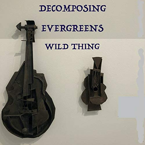 Decomposing Evergreens