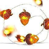 Ideapark Eicheln Deko Lichterketten, 2M 20 LED Lichterketten Batteriebetrieben mit 8 Flimmer Modi, Fernbedienung und Timer für Herbst, Halloween, Erntedankfest, Hochzeit, Geburtstag Party
