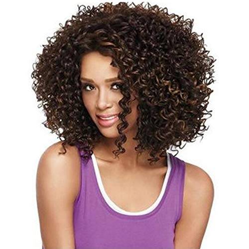 GCGY Porte Postiches African Female wig Short Hair wig Black Hair wig Small Volume Explosion Headgear European and American Hot wig Set (Couleur : Brown)