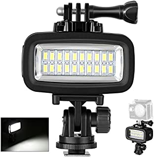 Neewer Waterproof Up to 131ft/40m Underwater 20 LED 700LM Flash Dimmable Fill Night Light with 3 Color Filter(White, Orange, Purple) for GoPro Hero 7 6 5 4 3+ Action Camera and All DSLR Cameras