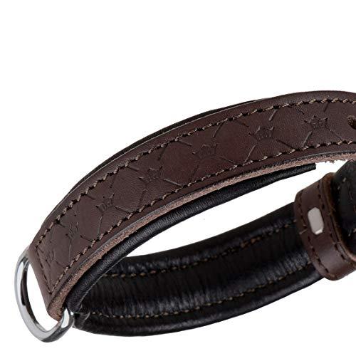MICHUR Design Hundehalsband Leder, Lederhalsband Hund, Halsband, Braun, Leder, in verschiedenen Größen erhältlich