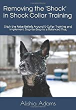 Removing the 'Shock' in Shock Collar Training: Ditch the False Beliefs Around E-Collar Training and Implement Step-by-Step to a Balanced Dog
