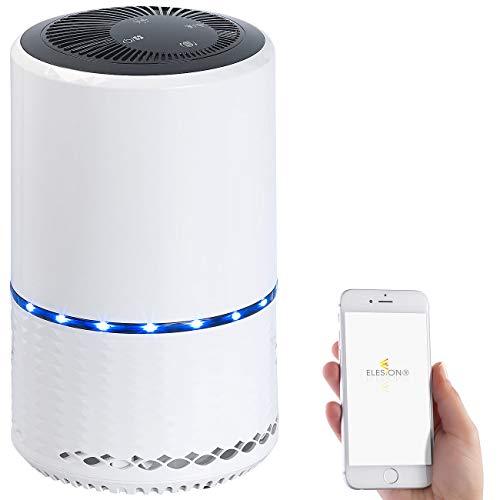 Sichler Haushaltsgeräte Purificador de aire: Purificador de aire con ionizador, Filtro de aire 2en1, WiFi y aplicación, hasta 30 m² (filtro de aire Con HEPA)