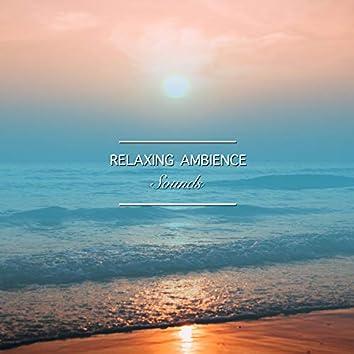 2018 Sonidos de Ambiente Relajante para el Despertar Espiritual