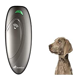 10 Best Anti Bark Device for Dogs | Reviews & Buying Guide 11