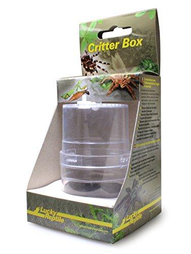 Lucky Reptile Critter Box, Aufzuchtdose für Vogelspinnen, Mantiden und Insekten