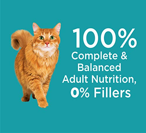 Iams Proactive Health Adult Indoor Weight & Hairball Control Dry Cat Food |