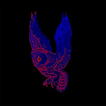 The Owl - EP
