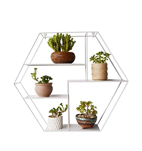 estantería hexagonal fabricante Cxmm