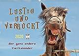 Lustig und verrückt - der ganz andere Tierkalender (Wandkalender 2020 DIN A2 quer)