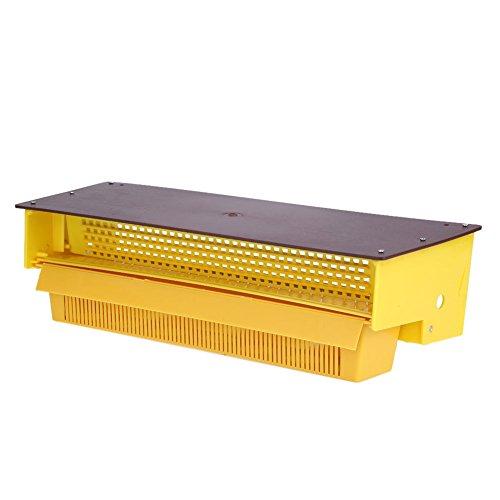 Zerodis Imkerei Pollenfalle Plastik Pollen Fallen Kollektor mit Belüftetem Blütenstaub Behälter Hängende Bienenzucht Werkzeuge Zubehör Imkerei Ausrüstung