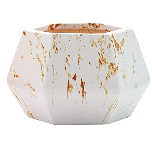 Maceta de cerámica para plantas suculentas, maceta hexagonal, contenedor para cactus, bonsái, hierbas, decoración de interiores, hogar, oficina, color blanco