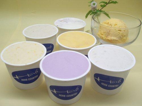 手作りアイスクリーム・当店おすすめセット(120ml) (12個セット)
