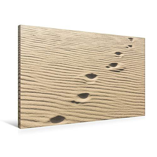 CALVENDO Premium Textil-Leinwand 90 cm x 60 cm quer, EIN Motiv aus dem Kalender Sylt - Magische Momente   Wandbild, Bild auf Keilrahmen, Fertigbild auf echter Fußspuren im Sand Natur Natur