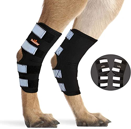NeoAlly Pair Dog Rear Leg Brace Canine Rear Hock Joint Support with Safety Reflective Straps for Joint Injury and Sprain Protection, Wound Healing and Loss of Stability from Arthritis (XS Pair)