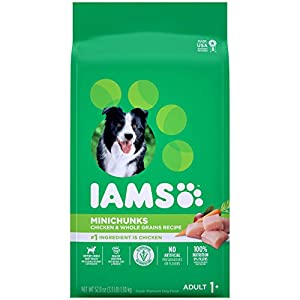 IAMS PROACTIVE HEALTH Adult Minichunks Small Kibble High Protein Dry Dog Food with Real Chicken, 3.3 lb. Bag