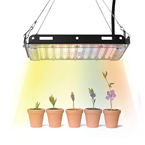Faucet LED Grow Light 800W Phyto Lampe für Pflanze 3500K Warmweiß 5500K Kaltweiß mit rotem und blauem Wachstumszelt Sonnenlicht LED Hydroponic