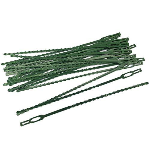 Yinuoday 50 Pièces Cravates de Plantes Réglables Cravates de Plantes de Jardin Cravates Flexibles en Plastique Robuste pour Plantes Cravates Vertes pour Le Soutien des Plantes de Jardin