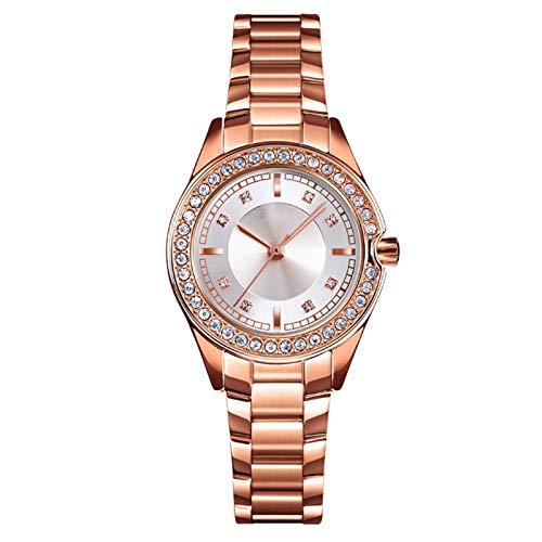YQCH Reloj de Diamante Elegante a Prueba de Agua Reloj de Cuarzo de Acero Inoxidable Vestido de Mujer Reloj Mujer (Color : C)