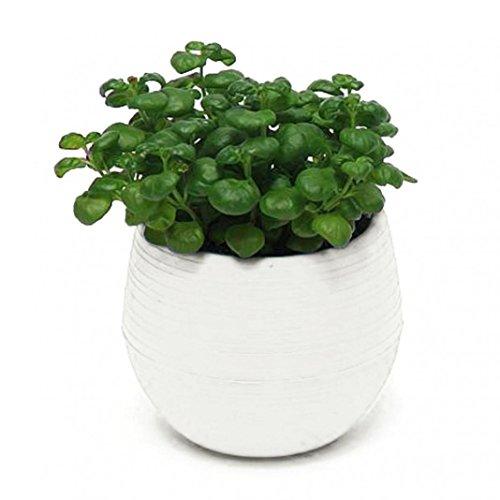 Good01 Pot de fleurs décoratif en plastique brillant - Soucoupe - Décoration de maison ou de jardin - Blanc