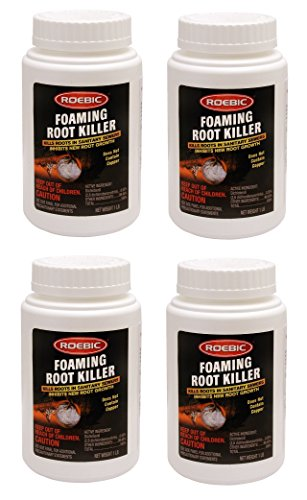 Roebic FRK Foaming Root Killer, 1-Pound (4, 1 lb)