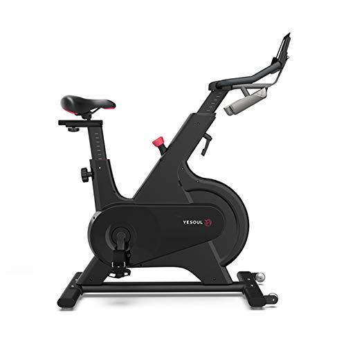 YourBoob Bicicleta De Ciclo Interior, Bicicleta Giratoria Inteligente Control Magnético Hogar Equipo De Ejercicios para Pérdida De Peso Ultra Silencioso Bicicleta Estática,Negro