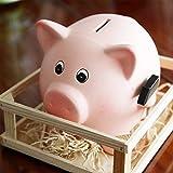 Tirelire Cochon Rosé en Céramique avec enclos et Marteau. Dimensions 21X. Idéal pour Petits économies et pour décorer