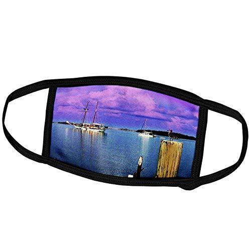 3dRose Sandy Mertens Florida - Dry Tortugas National Park - Harbor View from Garden Key (Textured) - Face Masks (fm_60243_3)