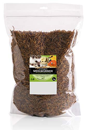UGF - Premium Mehlwürmer getrocknet 1 Kg, Insekten Snacks für Vögel, Hamster, Igel, Nager, Eidechsen, Schildkröten – ohne Konservierungsmittel und Farbstoff…