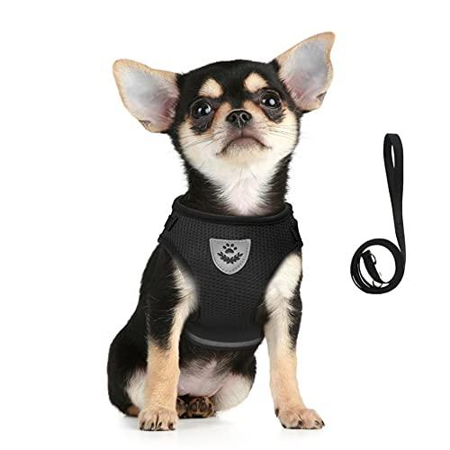 FEimaX Hundegeschirr und Leinen Set für Hunde, Weich Mesh Gepolstert Geschirr für Welpen und Katzen, Reflektierende Verstellbare Atmungsaktive Brustgeschirr für Gehen, Laufen, Training