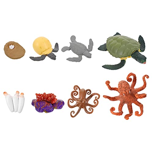 TOYANDONA 2 Juegos de Figuras de Ciclo de Vida de Animales Marinos de Tortuga Verde Pulpo de Plástico Figuras Marinas Kit de Juguete Modelo de Crecimiento Proyecto Escolar Pastel de