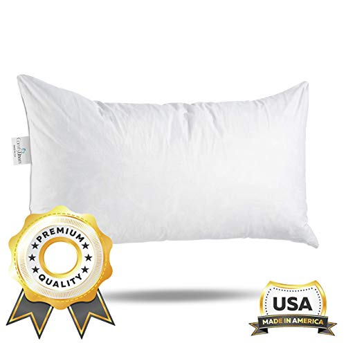 Buy ComfyDown 95% Feather 5% Down, 14 X 22 Rectangle Decorative Pillow Insert, Sham Stuffer - Made i...