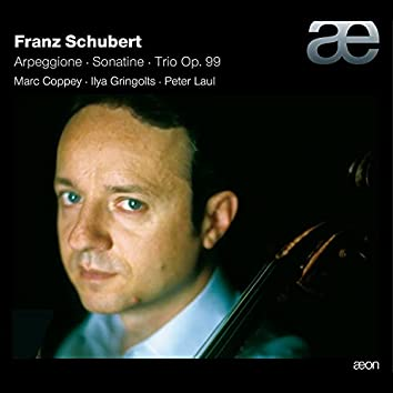 Schubert: Arpeggione, Sonatina & Trio Op. 99