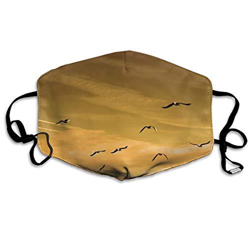 Houity stofdicht wasbaar masker, vogel vliegen in de lucht in de zonsondergang, zacht, ademend, wasbaar, knop verstelbare masker, geschikt voor mannen en vrouwen maskers