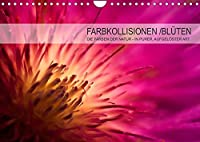 FARBKOLLISIONEN /BLUeTEN (Wandkalender 2022 DIN A4 quer): DIE FARBEN DER NATUR - IN PURER, AUFGELOeSTER ART (Monatskalender, 14 Seiten )