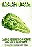Lechuga: Un breve libro ilustrado de hechos para ayudar a los niños a entender las frutas y verduras. Libro ilustrado y educativo para niños de 4 a 10 ... 22 (Datos Divertidos Sobre Frutas y Verduras)